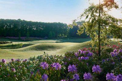 Golfpark haenen bestuurders golfdag 2018